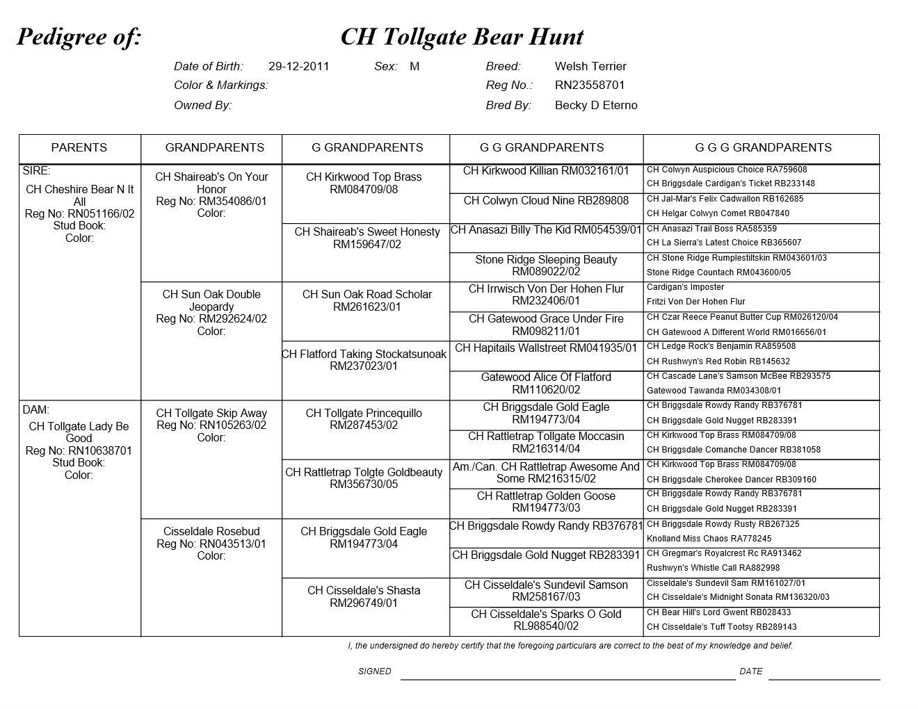 CH Tollgate Bear Hunt's Pedigree