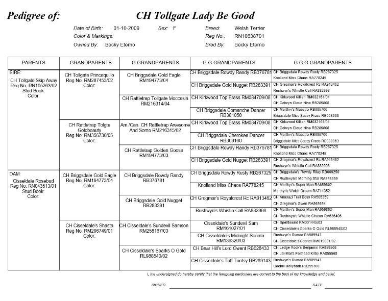 CH Tollgate Lady Be Good's Pedigree